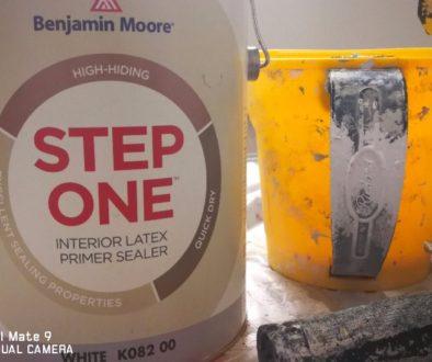 Benjamin Moore vs Sherwin Williams Paint
